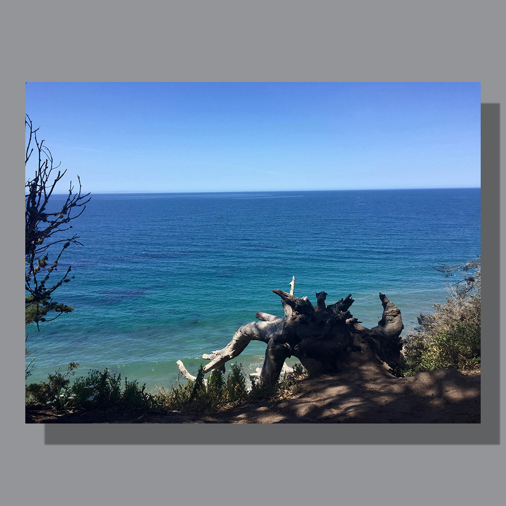 image-landscape-pacific-ocean-1
