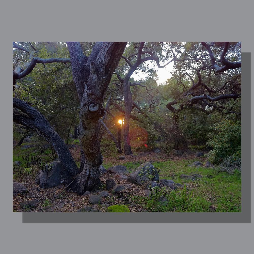 image-landscape-rocky-nook-2