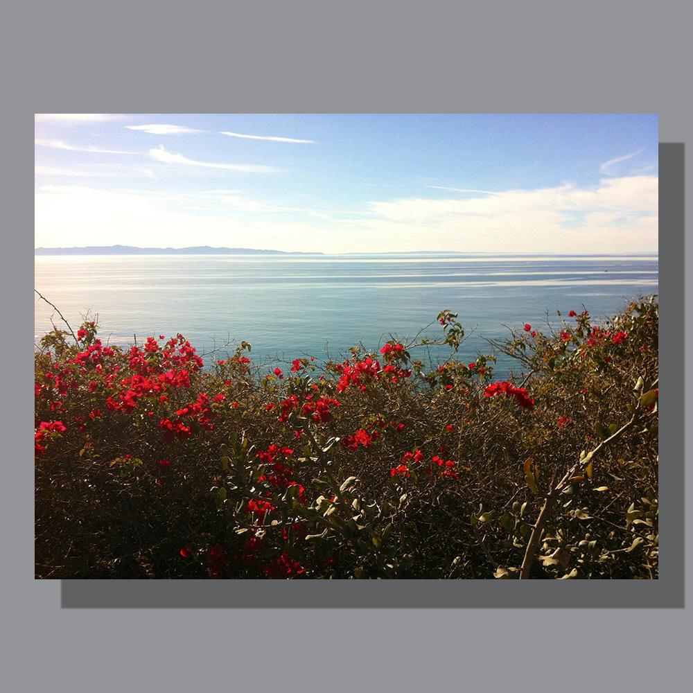 image-landscape-pacific-ocean-2