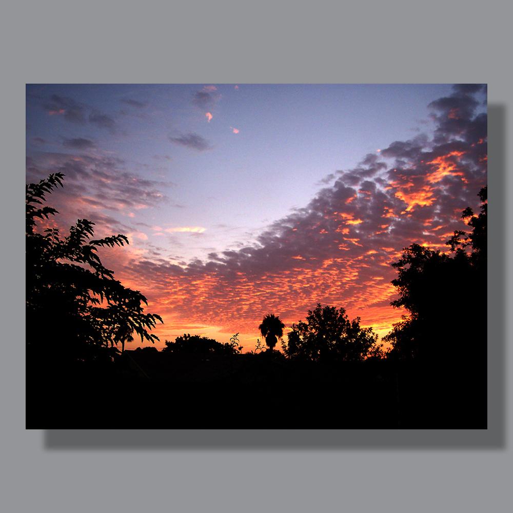 image-landscape-san-diego-miramar